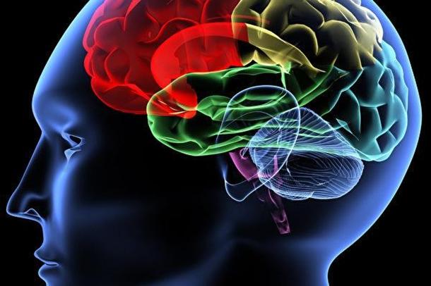 美國著名精神科醫生彼得布利金(Peter Breggin)在著作《為藥瘋狂》中寫到,精神治療藥物必定會損害大腦